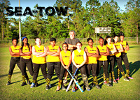 Sea Tow Softball 2017